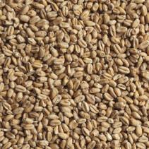 Солод пивоваренный пшеничный 1 кг