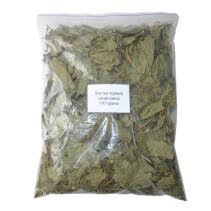 Листья черной смородины 100 грамм