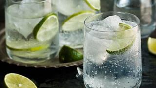 Домашний джин №1