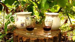 Старосветская вишневая наливка в домашних условиях