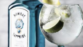 Домашний джин